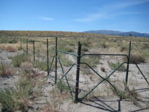 Gated barbed wire fence